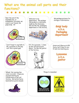 Introduction to the parts of an animal cell comic strip