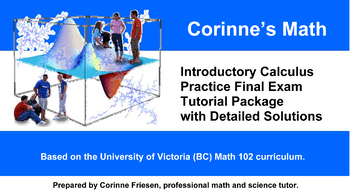 Introductory Calculus Practice Final Exam with Detailed Solutions