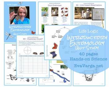 Introductory Entomology Unit Study