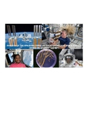 Invasion of the Space Bacteria Cells on the International Space Station