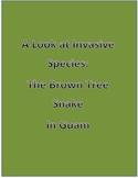 Invasive Species Brown Tree Snake in Guam