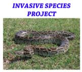 Invasive Species Project Rubic