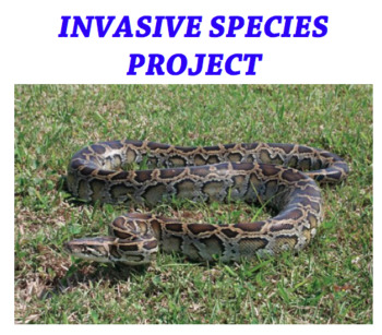 Invasive Species Project Rubic