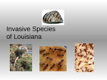 Invasive Species of Louisiana