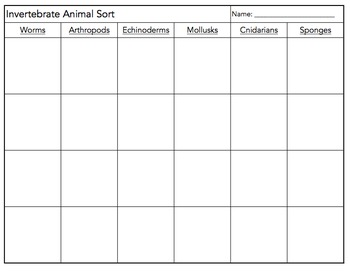Invertebrate Animal Sort