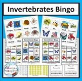 Invertebrate Bingo Game (Animal Classification)