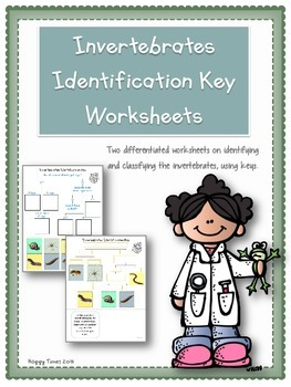 Invertebrate Animals Classification Identification Key Worksheets