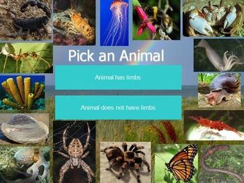 Invertebrate Animals Interactive Identification Game: Science