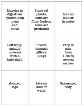 Invertebrate Characteristics Card Game