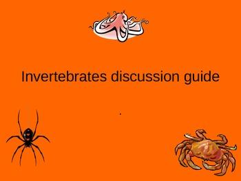 Invertebrate Classification