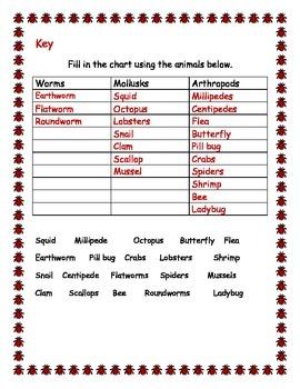 Invertebrate Classification Activity