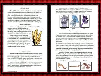 Invertebrate Classification and Characteristics