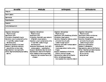 Invertebrate Comparison Worksheet