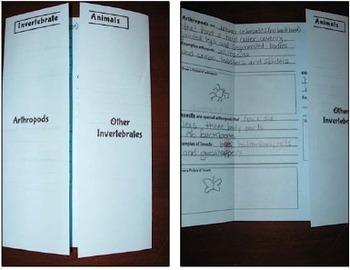 Invertebrate Flip Book
