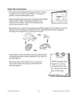 Invertebrate Life Cycles