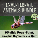 Animalia: Invertebrate Animal Phyla- PowerPoint, Graphic Organizers & Quiz
