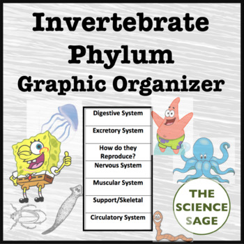 Invertebrate Phylum Graphic Organizer