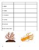 Invertebrate Vocabulary