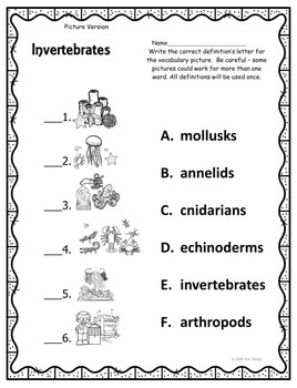 Invertebrate Vocabulary Assessment