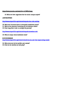 Invertebrate WebQuest