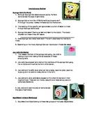 Invertebrate Worksheet