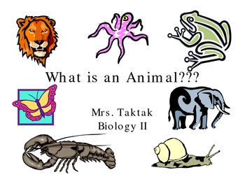 Invertebrate Zoo Lecture on Ppt