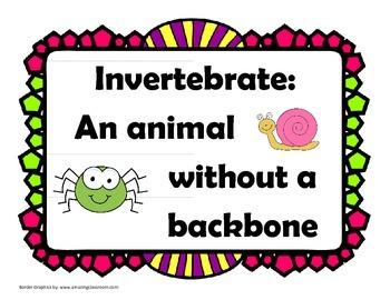 Invertebrate and Vertebrate Poster