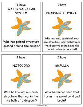 Invertebrates Biology I Have, Who Has Games