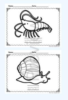 Invertebrates Color and Trace