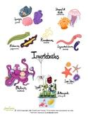 Invertebrates: Creepies and Crawlies!