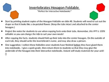 Invertebrates Hexagon Foldable - Perfect for Interactive Notebooks!