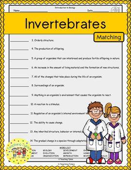 Invertebrates Matching