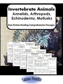 Invertebrates Non Fiction Reading Comprehension Passages