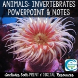 Invertebrates PowerPoint Lesson and Notes - Animals Power Point