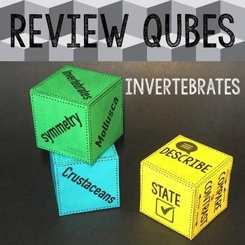 Invertebrates Review Qubes