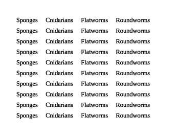 Invertebrates Sort