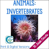 Invertebrates Task Cards with PowerPoint Review