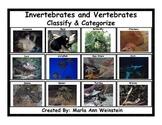 Invertebrates and Vertebrates Classify & Categorize