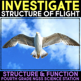 Investigate - Bird Structures for Flight - Structure and Function