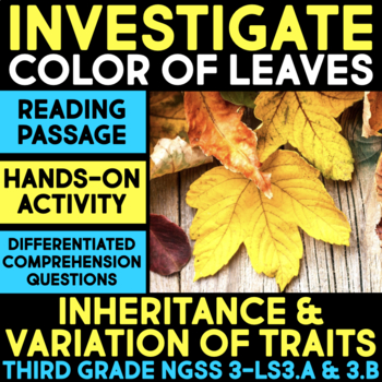 Investigate Color of Leaves - Inheritance and Variation of Traits Station