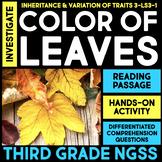 Investigate Color of Leaves - Inheritance and Variation of Traits Station