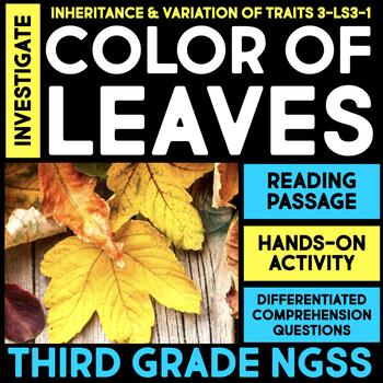 Investigate Color of Leaves - Inheritance and Variation of