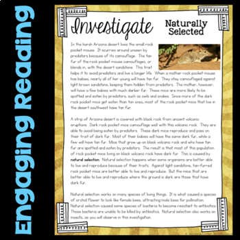 Investigate Natural Selection - Science Station