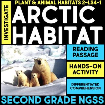 Investigate the Arctic Habitat - Second Grade Science Stations