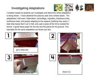 Investigating Adaptations