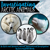 Informational Writing Arctic Animals