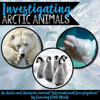 Informational Writing Arctic (and Antarctic!) Animals