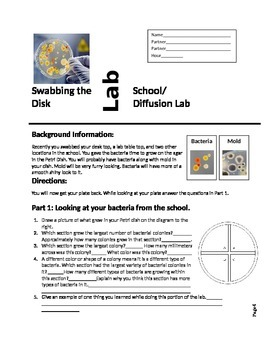 Investigating Bacteria and Anti Bacterial Lab Report and Rubric