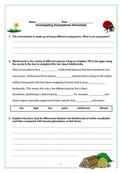 Investigating Ecosystems Worksheet