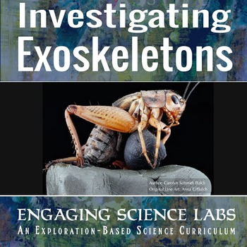 Investigating Exoskeletons; Comparative Anatomy with Paper